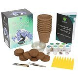 Ashbrook Outdoors Bonsai Starter Kit